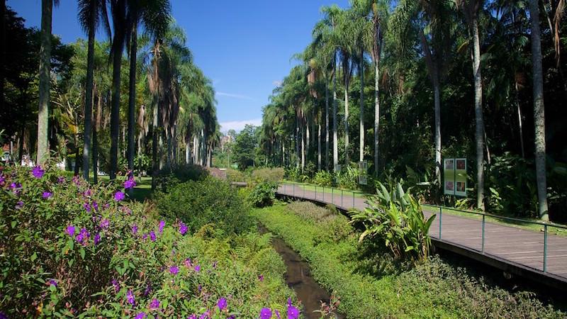 Jardim-Botanico-64500