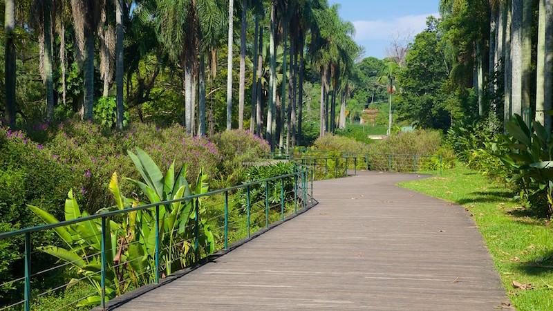 Jardim-Botanico-64501