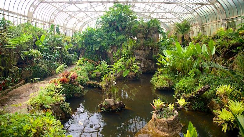 Jardim-Botanico-64511