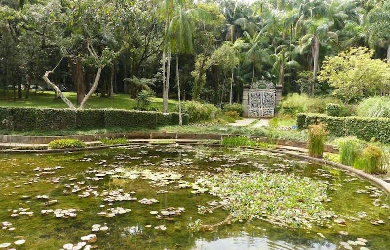 jardim-botanico-de-sao-paulo9